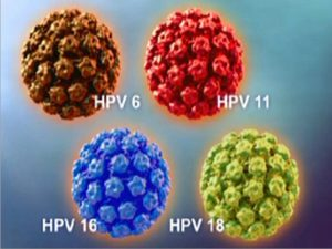 Những thông tin cần biết về virus HPV gây mụn cóc